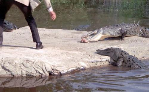 Cảnh chạy trên đàn cá sấu khó tin trong phim về điệp viên 007 - 2