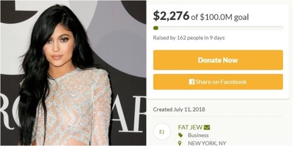 Sau 9 ngày kêu gọi, đã có 162 người tham gia vào chiến dịch. Số tiền fan của Kylie quyên góp được cho đến thời điểm hiện tại là& 2.276 USD, một con số khiêm tốn so với mục tiêu 100 triệu USD đề ra.