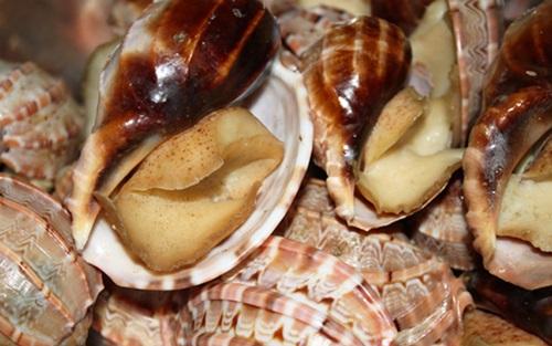 Chỉ có thánh ăn ốc mới phân biệt được các loại ốc này - 6