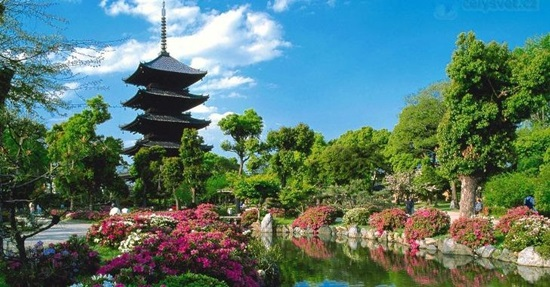 Đây là điểm đến nổi tiếng nào của đất nước Nhật Bản? - 2