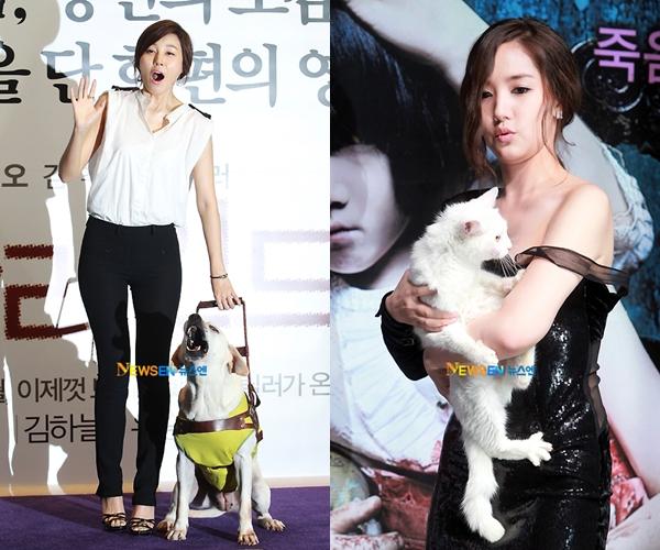 Park Min Young bế chú mèo trắng