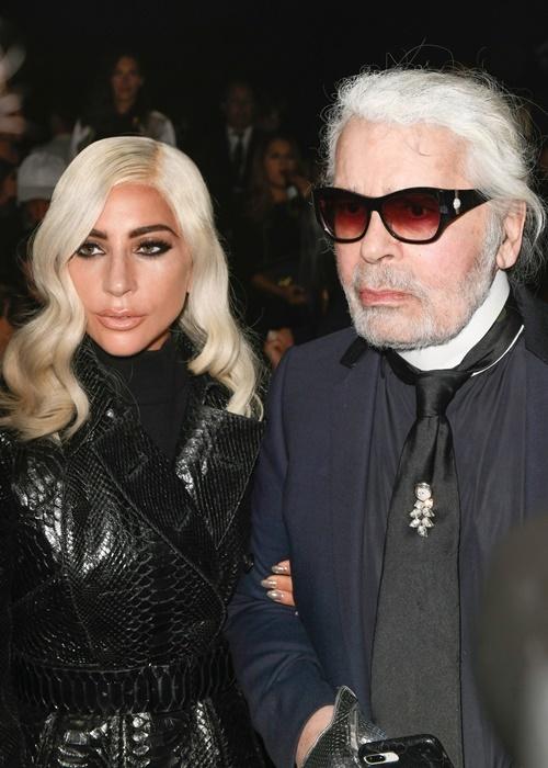 Show Céline có sự xuất hiện của nhiều ngôi sao nổi tiếng khác, trong đó có nữ ca sĩ Lady Gaga và NTK Karl Lagerfeld.