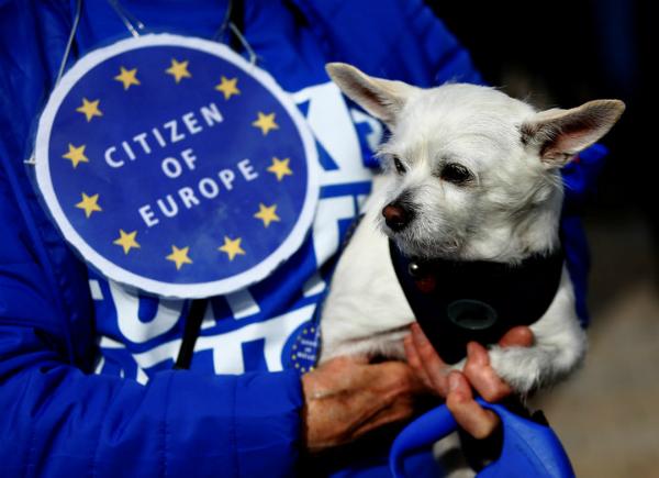 Hãng thông tấn Reuters đưa tin, khoảng một nghìn người dân Anh mang theo chó cưng tham gia vào cuộc tuần hành mang tên Wooferendum vào cuối tuần trước.