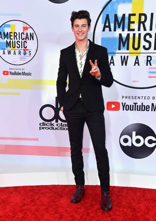 Shawn Mendes và kiểu pose hình bất hủ của anh chàng.