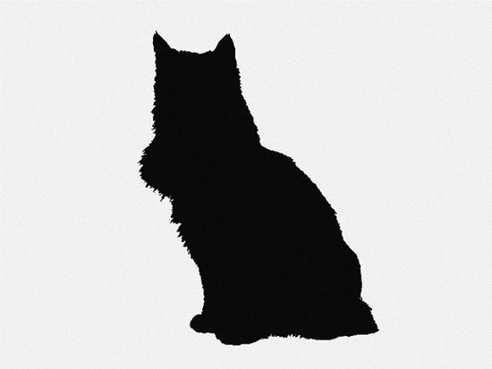 Nhìn bóng mèo cưng đoán giống loài - 8