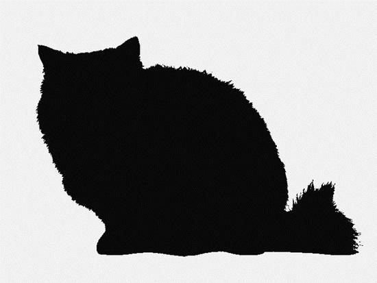 Nhìn bóng mèo cưng đoán giống loài (2) - 3