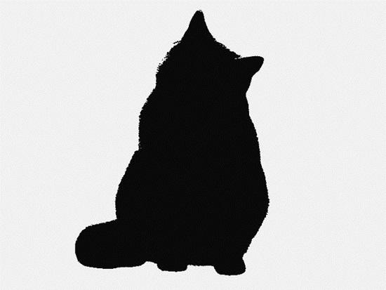 Nhìn bóng mèo cưng đoán giống loài - 2