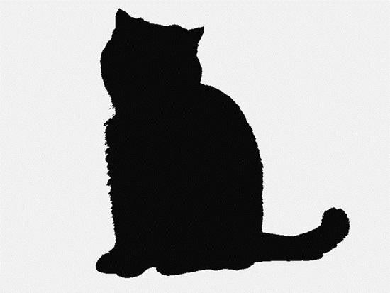 Nhìn bóng mèo cưng đoán giống loài - 5