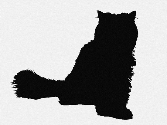 Nhìn bóng mèo cưng đoán giống loài - 6
