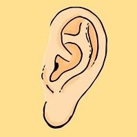 Bói vui: Xem dáng thùy tai để khám phá cá tính của bạn trong tình yêu - 1