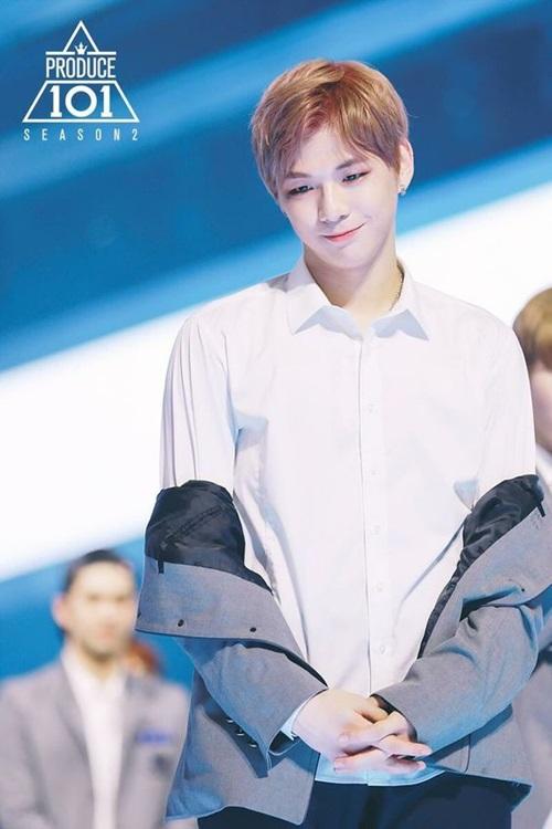 Kang Daniel từng suýt bỏ ước mơ làm idol để đi du học. Khi tham gia vào Produce 101, anh chàng không phải là thí sinh nổi trội ngay từ đầu nhưng lại hút fan nhiều nhất nhờ tài năng, khí chất trên sân khấu.