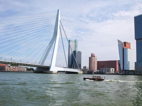 Cầu Erasmusbrug