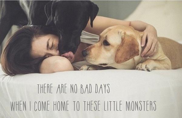 Tăng Thanh Hà cho những chú chó cưng nằm chung giường.