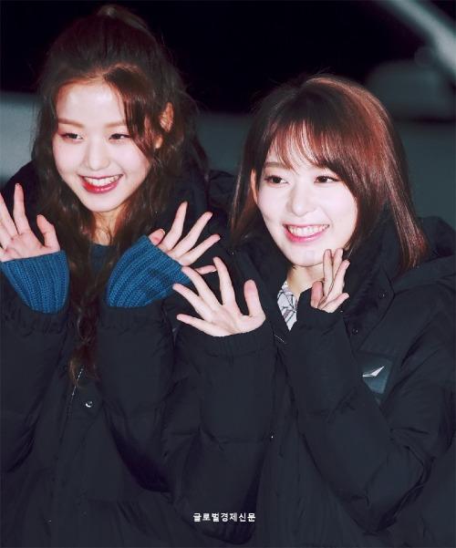 Trong các sự kiện gần đâythuộc giai đoạnquảng bá La vie en rose, Won Young và Sakura thường xuyên đứng cạnh nhau, tạo nên một cuộc so kè nhan sắc hấp dẫn.