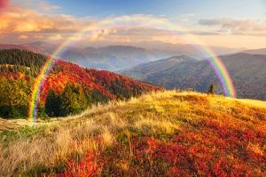 Trắc nghiệm: Chọn bức tranh phong cảnh hữu tình để khám phá thế mạnh và điểm yếu của bạn - 3