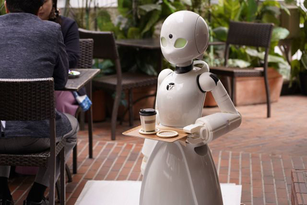 Quán cafe đặc biệt vừa xuất hiện tại Nhật Bản khi có nhân viên phục vụ là robot.