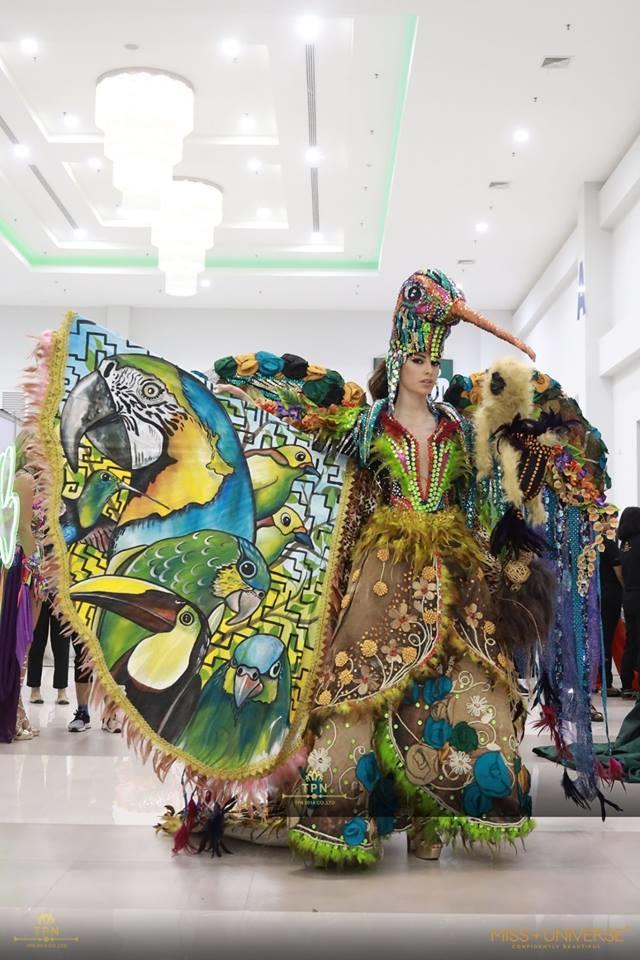 <p> Người đẹp Ecuador mang đến bộ váy cồng kềnh, sặc sỡ đầy màu sắc, lấy hình tượng chính là chú chim.</p>