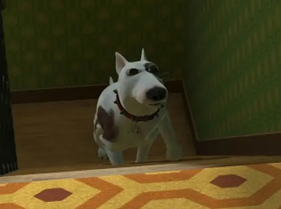 Những chú chó quen mặt này có tên là gì? - 2