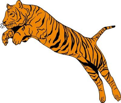 Con hổ