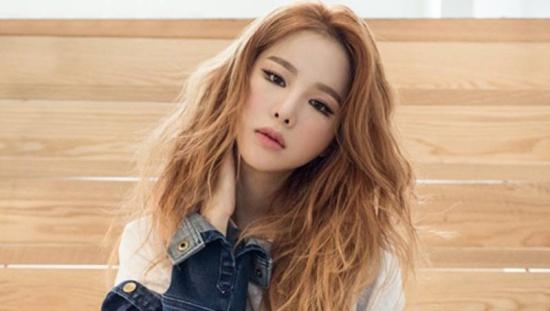 Fan Kpop đọ độ hiểu biết về EXID - 8