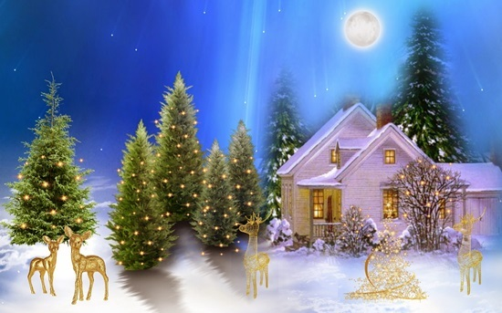 Bạn biết bao nhiêu về ngày lễ Giáng sinh? - 3