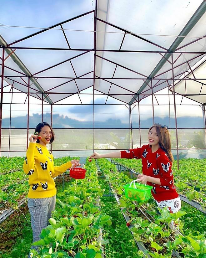 <p> Trong chuyến đi du lịch Đà Lạt mới đây, cả Kỳ Duyên và Minh Triệu đều chọn kiểu áo sweater in hình cún cưng với màu sắc khác nhau.</p>
