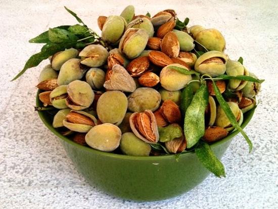 Bạn có biết những loại quả, hạt này? - 6