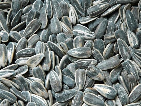 Bạn có biết những loại quả, hạt này? - 7