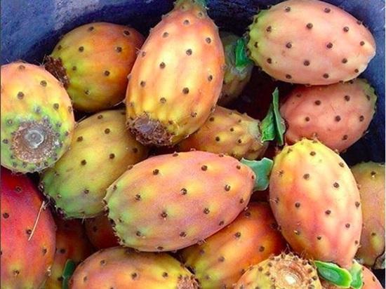 Bạn có biết những loại quả, hạt này? - 8