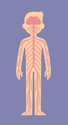 Trắc nghiệm: Chọn bộ phận cơ thể quan trọng nhất để khám phá cá tính của bạn - 3