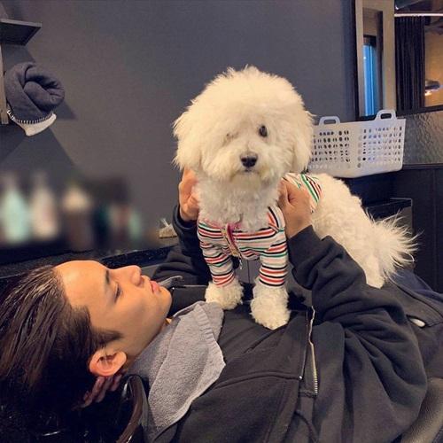 Min Gyu (Seventeen) vừa gội đầu vừa tranh thủ chơi với cún cưng.