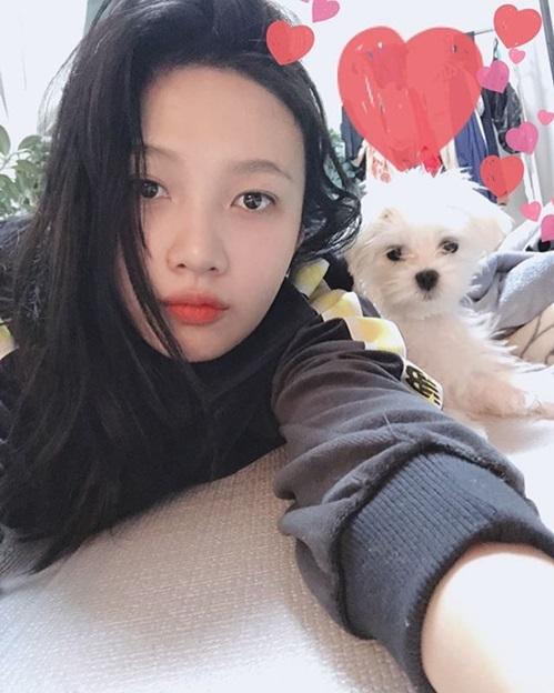 Joy (Red Velvet) giành thời gian nghỉ ngơi để chơi cùng cún cưng.