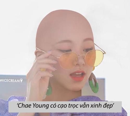 Chae Young nổi tiếng vì có khuôn mặt hợp với mọi màu tóc và fan cho rằng dù cô nàng cạo trọc vẫn đẹp.