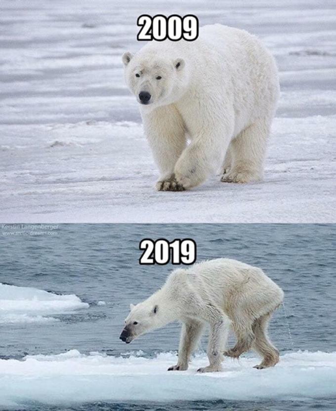 <p> Hình ảnh khiến nhiều người giật mình về biến đổi khí hậu.</p>