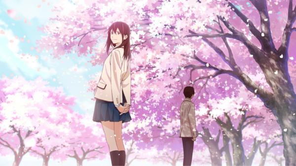 Sakura và Haruki là kiểu người thuộc hai thế giới khác nhau.