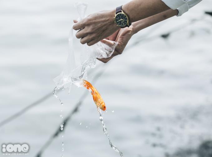 <p> Khu vực Hồ Tây là địa điểm được nhiều người dân chọn thả cá chép tiễn Táo quân về trời.Cá được ném, hất rơi tự do xuống dòng sông.</p>