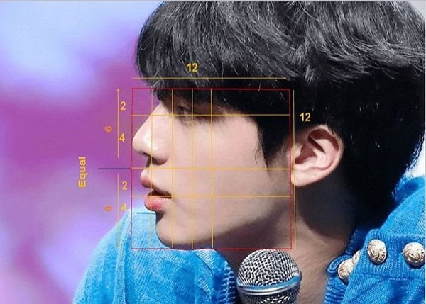 Theo các chuyên gia, Jin được chọn là mỹ nam số 1 thế giới vì anh sở hữu  khuôn mặt đối xứng tỷ lệ vàng, hoàn hảo dù chụp ở bất cứ góc độ  nào, có PTTM cũng không thể đẹp hơn.