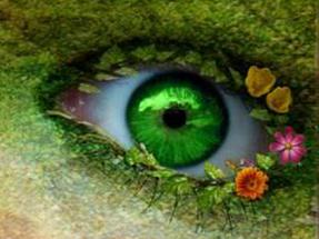 Trắc nghiệm: Con mắt thần kỳ nào có thể thấu rọi tâm hồn bạn? - 3