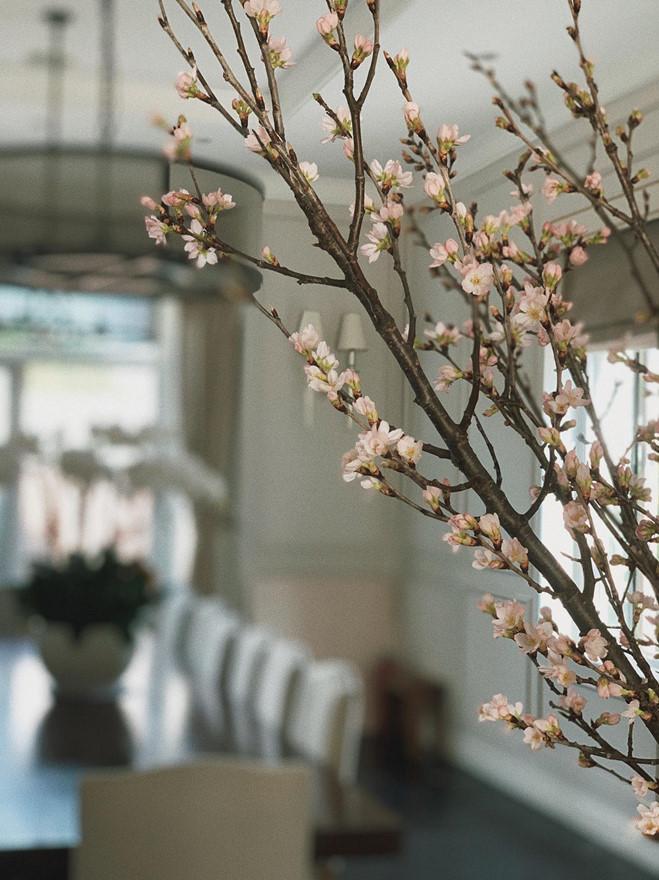 <p> Những cánh hoa đào nhà Tăng Thanh Hà đã nở bung do tiết trời ấm áp.</p>