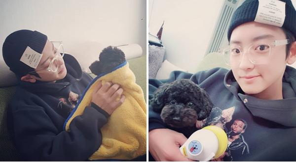 Chan Yeol ôm ấp cún cưng như chăm em bé.