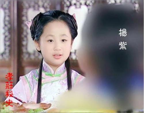 Năm 2002, Dương Tử tiếp tục gây chú ý trong Hiếu Trang bí sử, vai Đổng Ngạc Phi lúc nhỏ.