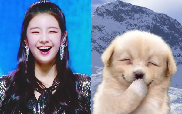 Nhiều fan ví gương mặt tươi cười của Lia giống như chú chó huyền thoại Internet. Một số bình luận: Cười lên là một bầu trời đáng yêu; Cưng quá, vẻ đẹp này hợp gu người Hàn lắm nè; Đối với tôi thì Lia xinh nhất nhóm; Đôi lúc cô ấy có vẻ khó chịu giống như những cô nàng xấu tính trường học, nhưng chỉ cần cười lên là lại dễ cảm ngay; Ban đầu Lia không nổi lắm nhưng ngày càng hút fan, chứng tỏ gái xinh nhà JYP vẫn luôn đỉnh...