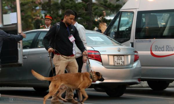 Mật vụ Mỹ dắt chó nghiệp vụ rà soát từng gốc cây, chiếc xe. Ảnh: Ngọc Thành.