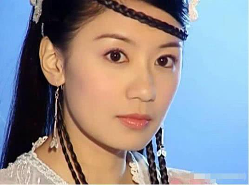 Sau Ỷ thiên đồ long ký, Giả Tịnh Văn góp mặt trong hàng loạt những bộ phim truyền hình đình đám khác, trước khi biến mất đầy bất ngờ vào năm 2012. Bộ phim gần nhất cô xuất hiện làThái Bình Công chúa.