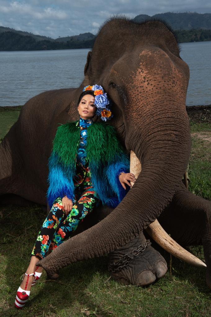 <p> Những chú voi đại ngàn có sự hợp tác rất ăn ý với người con của đất Tây Nguyên để tạo nên những bức hình sống động và đậm tính thời trang cao cấp.</p>