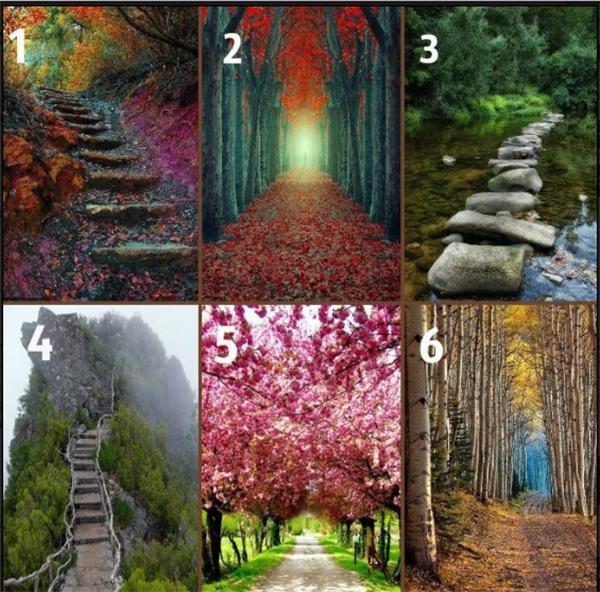 Trắc nghiệm: Con đường hé lộ nhiều điều thầm kín về bạn