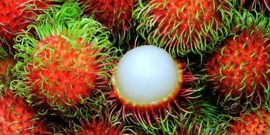 Kho từ vựng tiếng Anh về trái cây của bạn sâu rộng ra sao? - 4