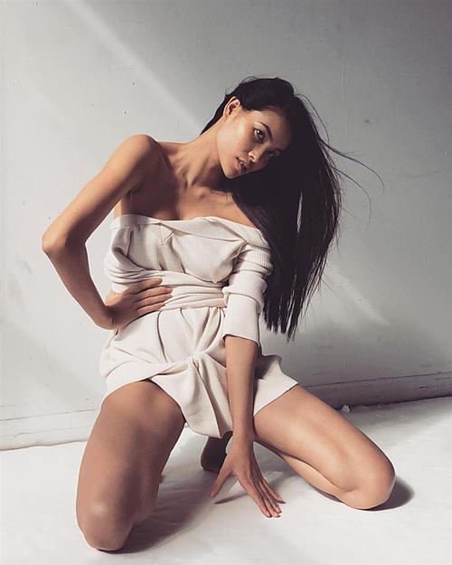 Hiện tại, Phạm Hương đầu quân cho công ty Renew Artists - agency được thành lập tại Hawaii, chuyên cung cấp nghệ sĩ là người mẫu, diễn viên, ca sĩ cho thị trường Mỹ và châu Âu. Hình ảnh cô chụp trong studio với thân hình gầy gò, thần thái nhợt nhạt nhận được sự quan tâm của khán giả.