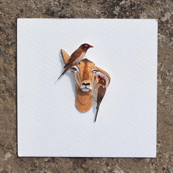 <p> Các tác phẩm của Nayan và Vaishai có đa dạng các loài động vật với đủ màu sắc, sống động như thật.</p>