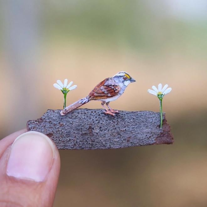 <p> Những mô hình động vật làm bằng giấy của hai nghệ sĩ trẻ người Ấn Độ Nayan và Vaishali được chú ý trên mạng xã hội Instagram. Đây là các tác phẩm cắt giấy tinh xảo, mô phỏng các loài động vật gấu, chim, ngựa...</p>